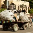 Zabbaleen trash collectors on cart — Stock Photo