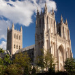 Royalty-Free Stock Photo: Side view of National Cathedral