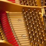 Inside grand piano — Stock Photo #3022630