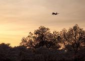 Aircraft landing at Reagan National — Stock Photo