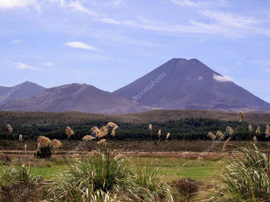 Grasses frame the volcano that was Mount Doom in Mordor in Lord of the Rings — Stock Photo #3022560