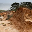 Broken Hill in Torrey Pines State Park - Stock Photo