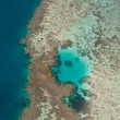 Great Barrier Reef — Stock Photo