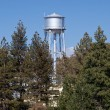 Water tower peeps above tree line — Foto Stock
