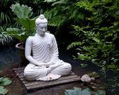 Socha buddhy v rybníku — Stock fotografie