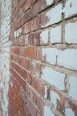 Brick wall perspective — Stock Photo