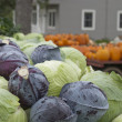 Cabbage for sale — Stock Photo