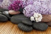Lilac spa — Stock Photo