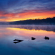 Stock Photo: Morning in lake