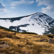 Mountain landscape — Stock Photo #2708597