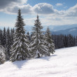 Winter in mountains — Stock Photo #2709691