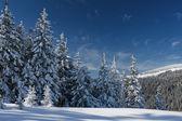 Zima w górach — Zdjęcie stockowe