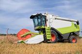Working harvesting combine in field — Stock Photo
