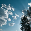 Clouds on blue sky with sunbeams from forest trees — Stock Photo #3304547