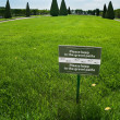 Please, do not keep gravel path. Tag with notice on green grass - Stock Photo