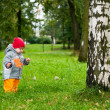 One little baby one year old walking in autumn park with maple — Stock fotografie