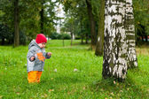 One little baby one year old walking in autumn park with maple — Stock Photo