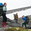 Stock Photo: Tired team of backpackers in mountains with knapsacks