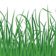 Grass background with seamless edge — Stock Vector