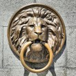 Bronze lion bas-relief with ring — Stock Photo