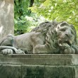 Sleeping lion sculpture — Stock Photo