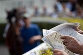 Horse at gallop race at hippodrome — Stock Photo