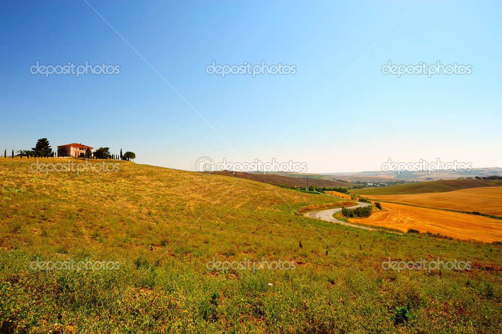 Cypress Alley Leading To The Farmer's House In Tuscany  Stock Photo #3637678