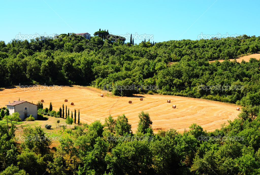 Glade With Many Hay Bales In Tuscany — Stock Photo #3693578