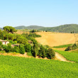 Chianti Region — Stock Photo #3771845