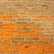 Brick Wall — Stock Photo #3835496