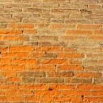Brick Wall — Stock Photo #3835496