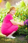 Jardinagem — Fotografia Stock