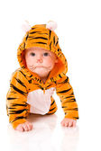 Tiger baby — Stock Photo