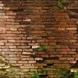 Old Wall — Stock Photo #3090785
