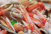 Feelers of prawn — Stock Photo