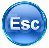 Esc icon blue. — Stock Photo