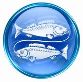 Pisces zodiac button icon, isolated on white background. — Stock Photo