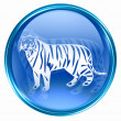 Tiger Zodiac icon blue, isolated on white background. — Stock Photo