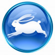 Rabbit Zodiac icon blue, isolated on white background. — Photo