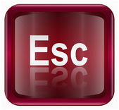 Esc icon dark red, isolated on white background — Stock Vector