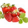 Red strawberries — Stock Photo