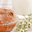 Breakfast with muffin — Stock Photo