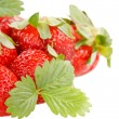 Red strawberry with green leaves — Stock Photo #3114250