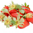 Red strawberry with green leaves — Stock Photo
