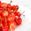 Sweet cherries — Stock Photo #3116786
