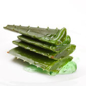 Extract of aloe — Stock Photo