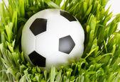 Football on the grass — Stock Photo