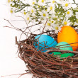 Easter eggs in a nest - Lizenzfreies Foto