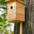 Wooden birdhouse on the tree — Stock Photo #3202732