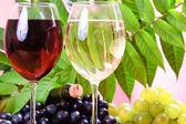 葡萄酒杯红酒与瓶 — 图库照片